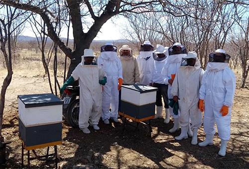 emepa-e-emater-implantam-apiarios-no-ecoprodutivo-3